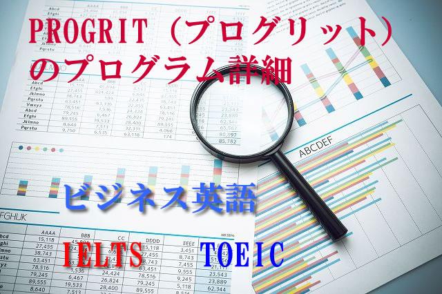 PROGRIT(プログリット)内容